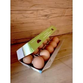 Freiland-Eier